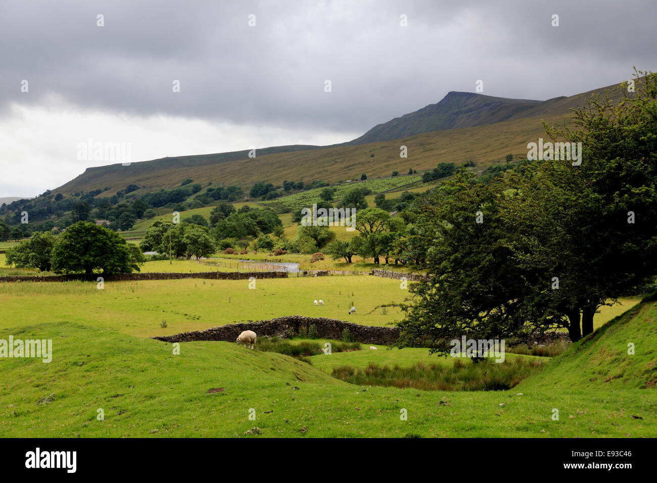 3292. Wild Boar Fell or Mallerstang, Eden Valley, Cumbria - Stock Image