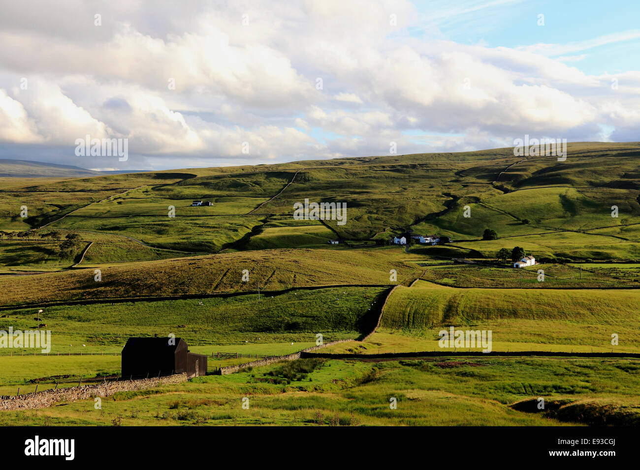 3237. Upper Teesdale, Durham, UK - Stock Image
