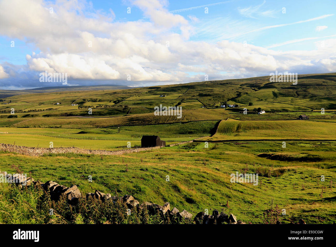 3239. Upper Teesdale, Durham, UK - Stock Image
