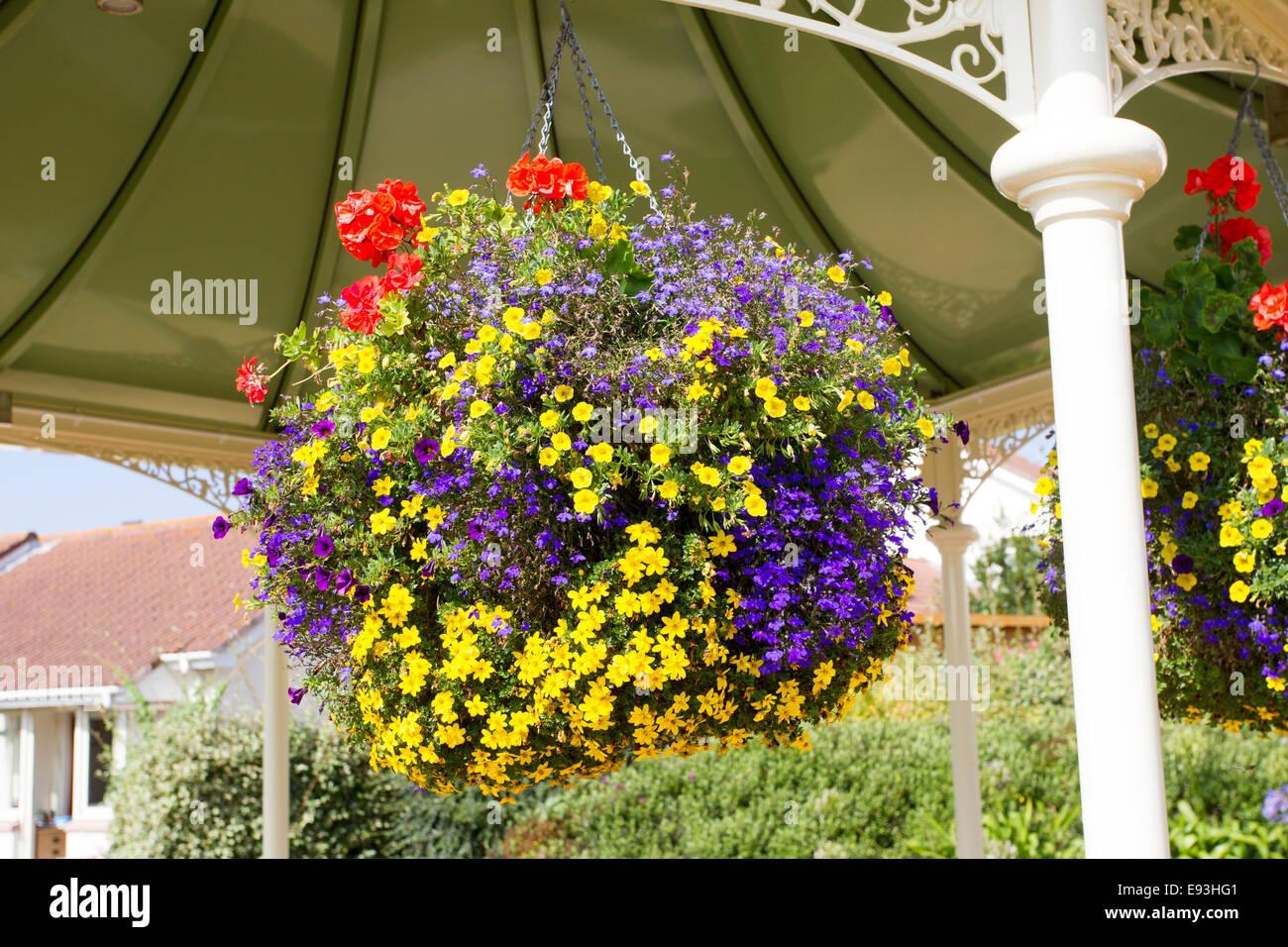 st ouen's parish  flower display hanging baskets - Stock Image
