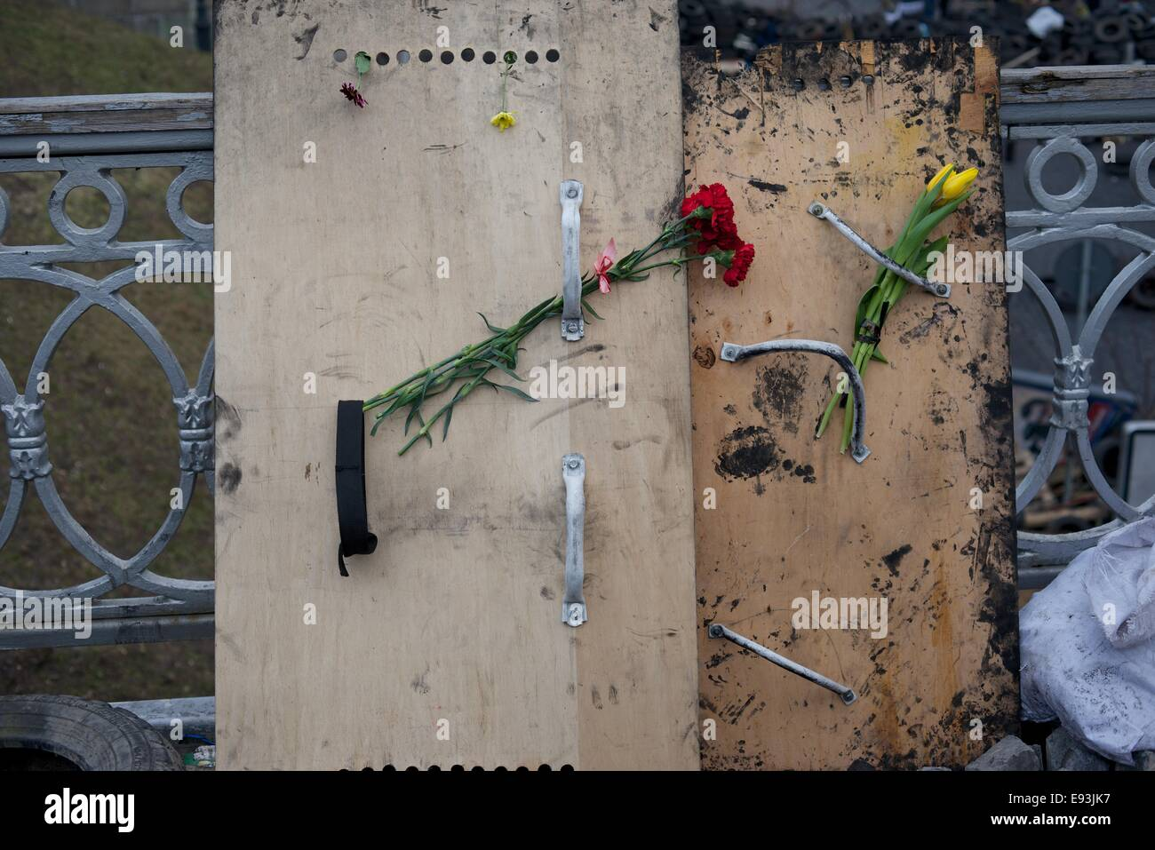 Flowers placed, in memory of the dead, on riot shields used by Maidan protesters, Kiev - Stock Image
