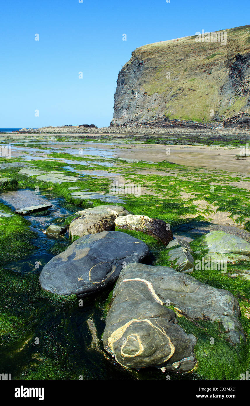 Crackington Haven in North Cornwall, UK - Stock Image