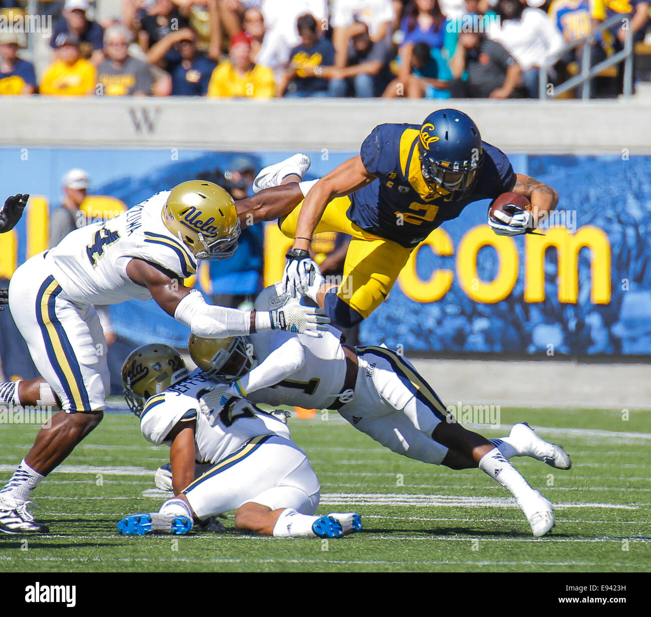 Berkeley USA CA. 18th Oct, 2014. California RB # 2 Daniel Lasco leep overs UCLA players for a first down during NCAA Football game between UCLA Bruins and California Golden Bears 34-36 lost at Memorial Stadium Berkeley Calif. Credit:  csm/Alamy Live News Stock Photo
