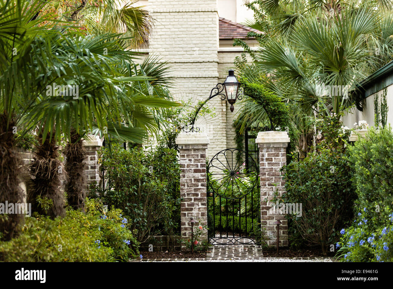 A private garden gate and old wall with palm trees in the