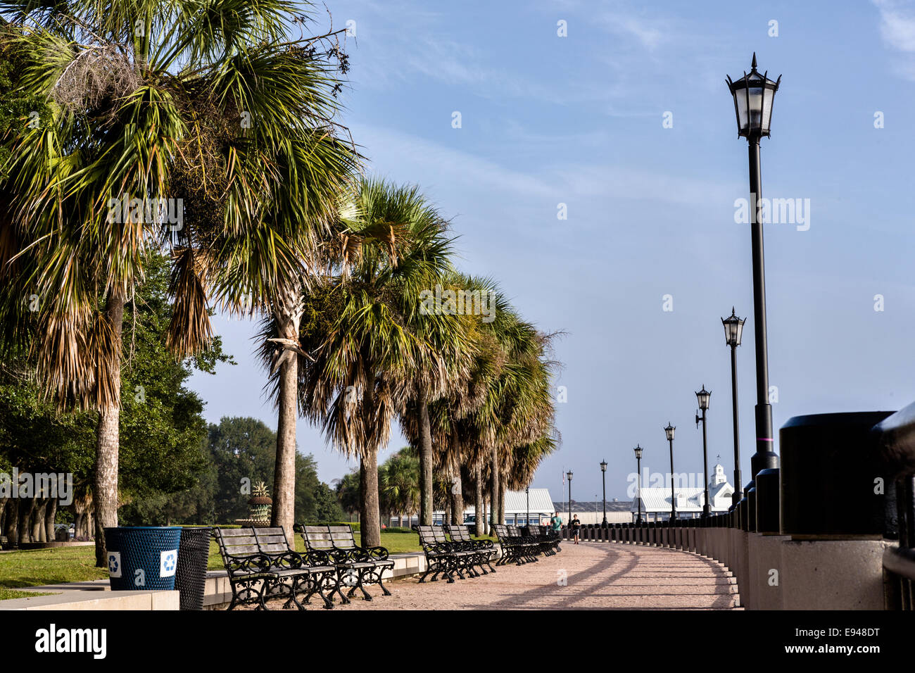 Benches along Waterfront Park on a foggy morning in historic Charleston, SC. - Stock Image
