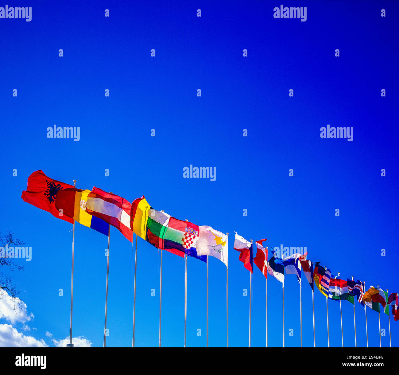 Flags of European countries in front of the Council of Europe building, Palais de l'Europe, Strasbourg, Alsace, - Stock Image
