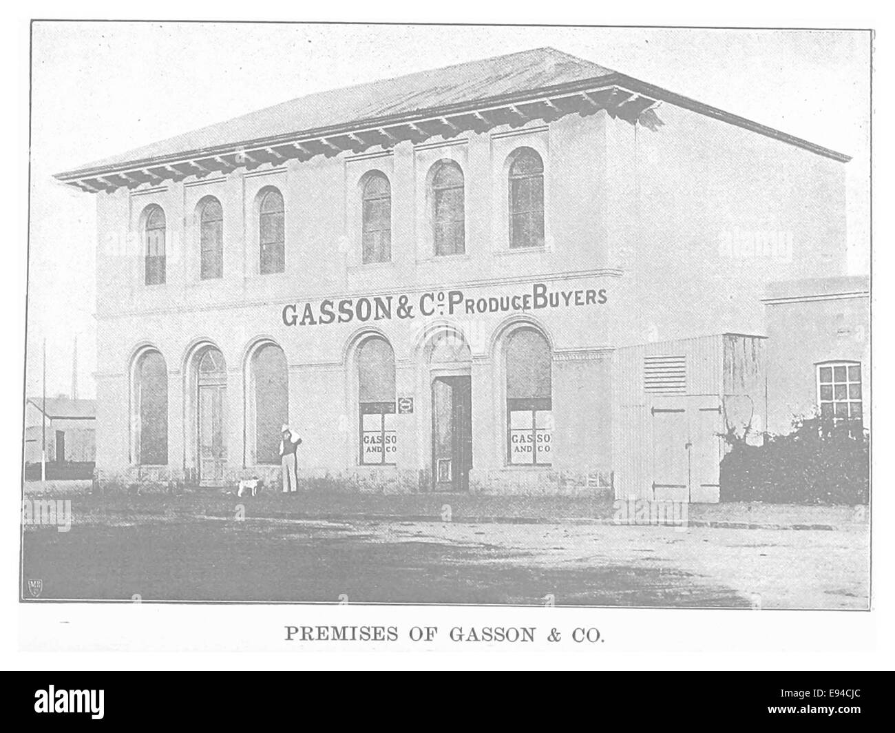 EL1893 pg115 Premises of Gasson and Co - Stock Image