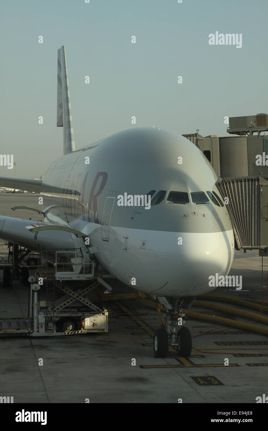 Doha, Qatar - 19 October 2014. Qatar Airways inaugurated the A380 on the Doha - London route on 10 October 2014. - Stock Image