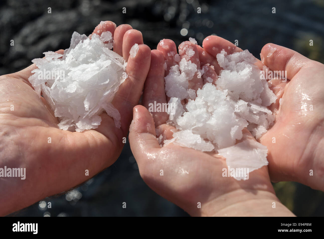 Sea Salt Solt Three Hands Palms Holding White Closeup Medicine Food Ingredient - Stock Image