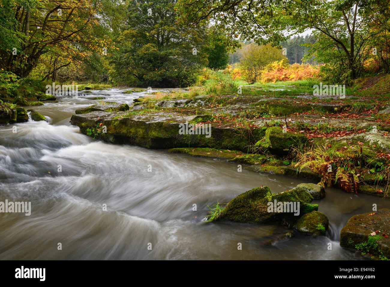 River Derwent near Shotley Grove in 'Shotley Bridge' - Stock Image