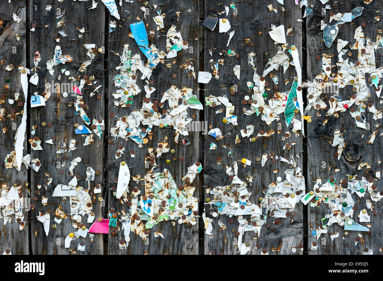 Wooden wall with poster scraps, tacks and staples, Germany - Stock Image