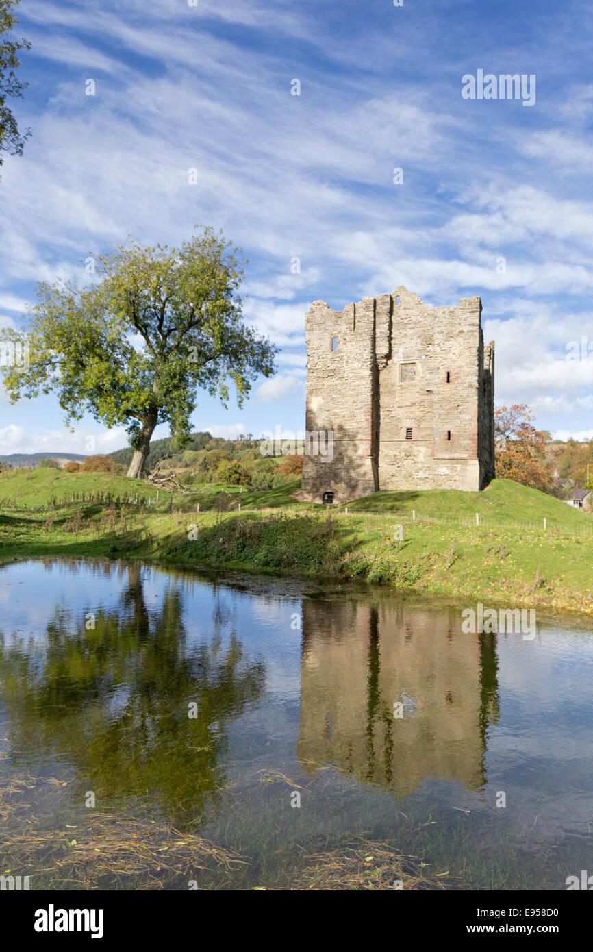 Hopton Castle keep, Hopton, Shropshire, England, UK - Stock Image