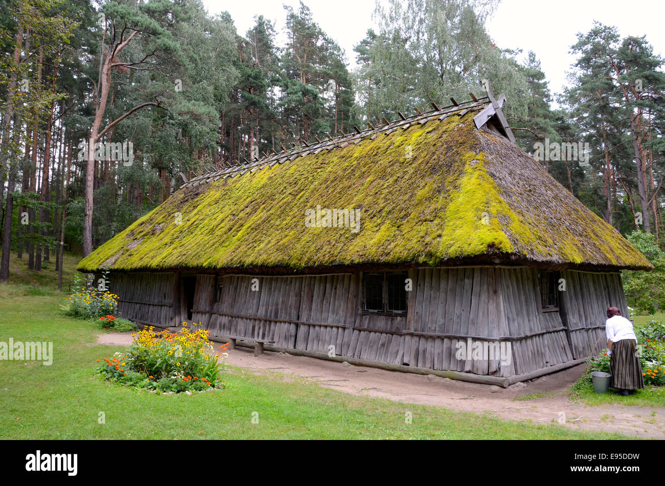 traditional latvian house latvian ethnographical open air museum - Stock Image