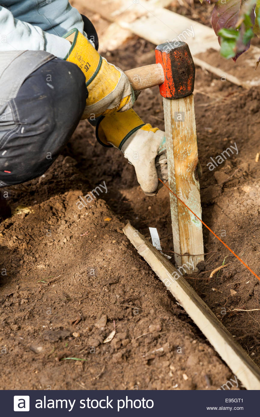 Setting out string line and peg for gravel board - Stock Image