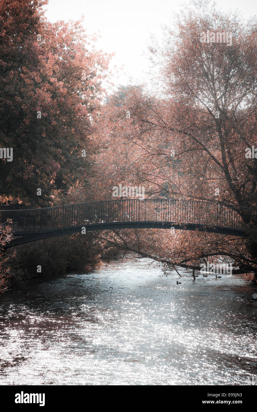 Pedestrian bridge over the River Avon processed for soft autumn colours - Stock Image