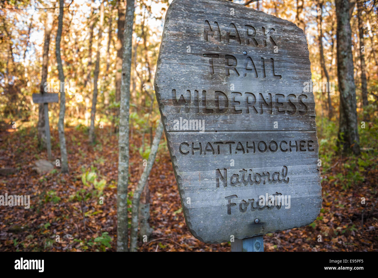 Autumn view of Mark Trail Wilderness sign on the Appalachian Trail in the Chattahoochee National Forest in North - Stock Image