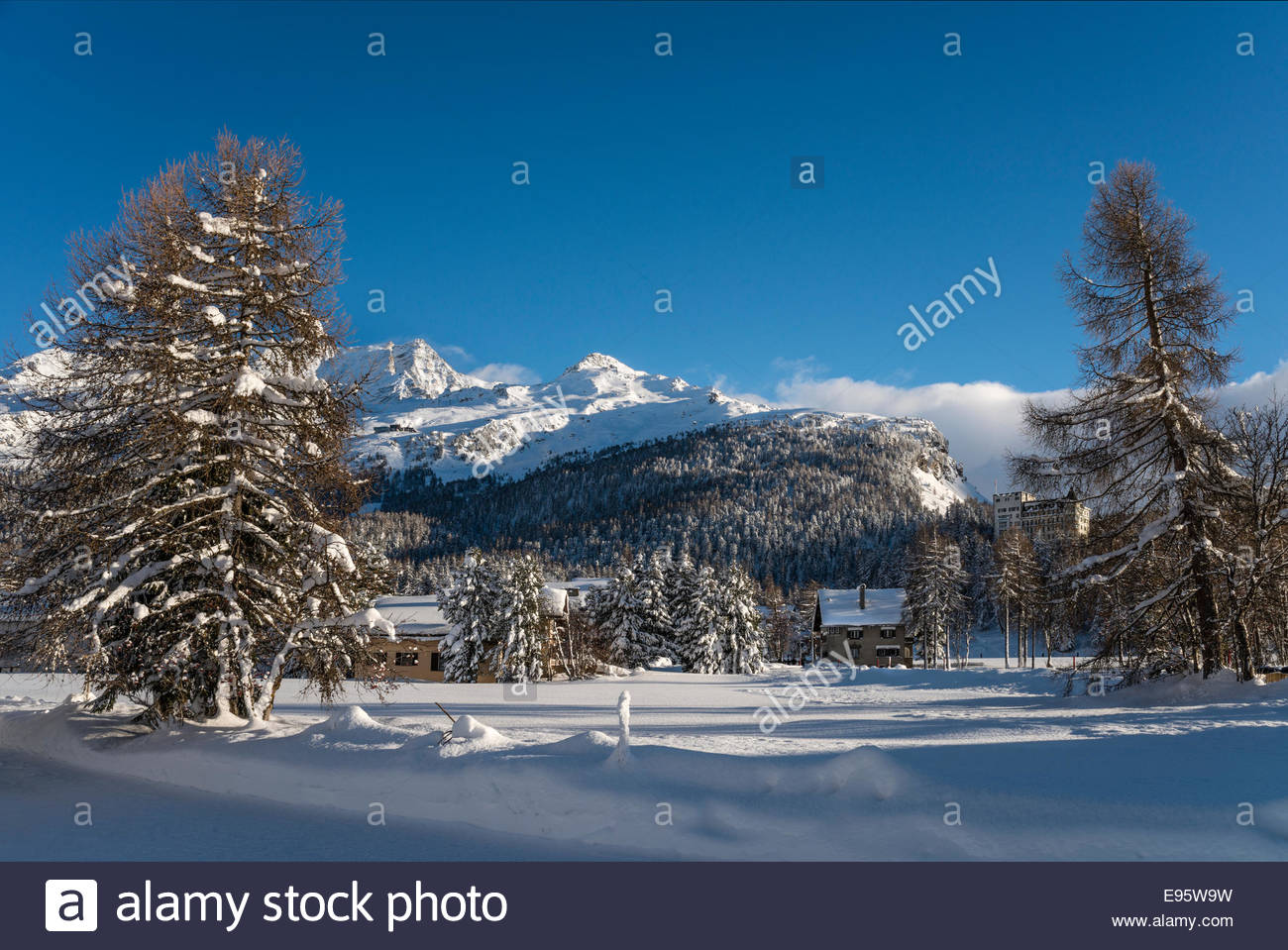 Switzerland, Engadine, Sils-Maria, Winter landscape | Schweiz, Oberengadin, Sils-Maria Winterlandschaft Stock Photo