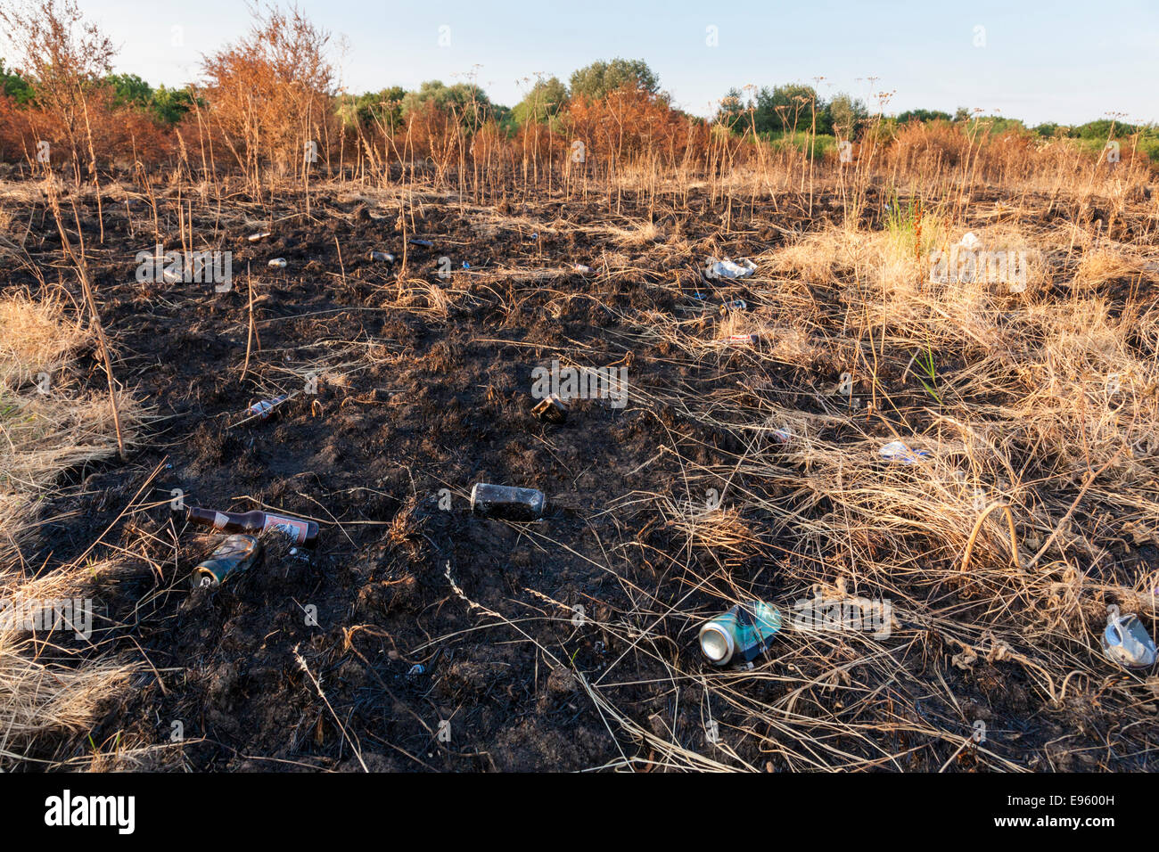 Fire damaged countryside. Litter of thrown away drinks cans and other rubbish revealed on the land after a grass - Stock Image