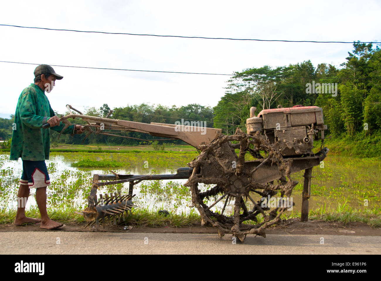 man with old plowing machine near paddy with rice - Stock Image