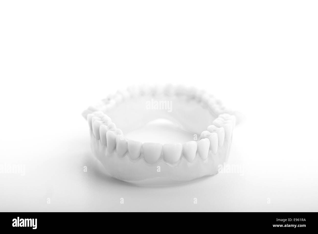 Molar Dent Stock Photos & Molar Dent Stock Images - Alamy