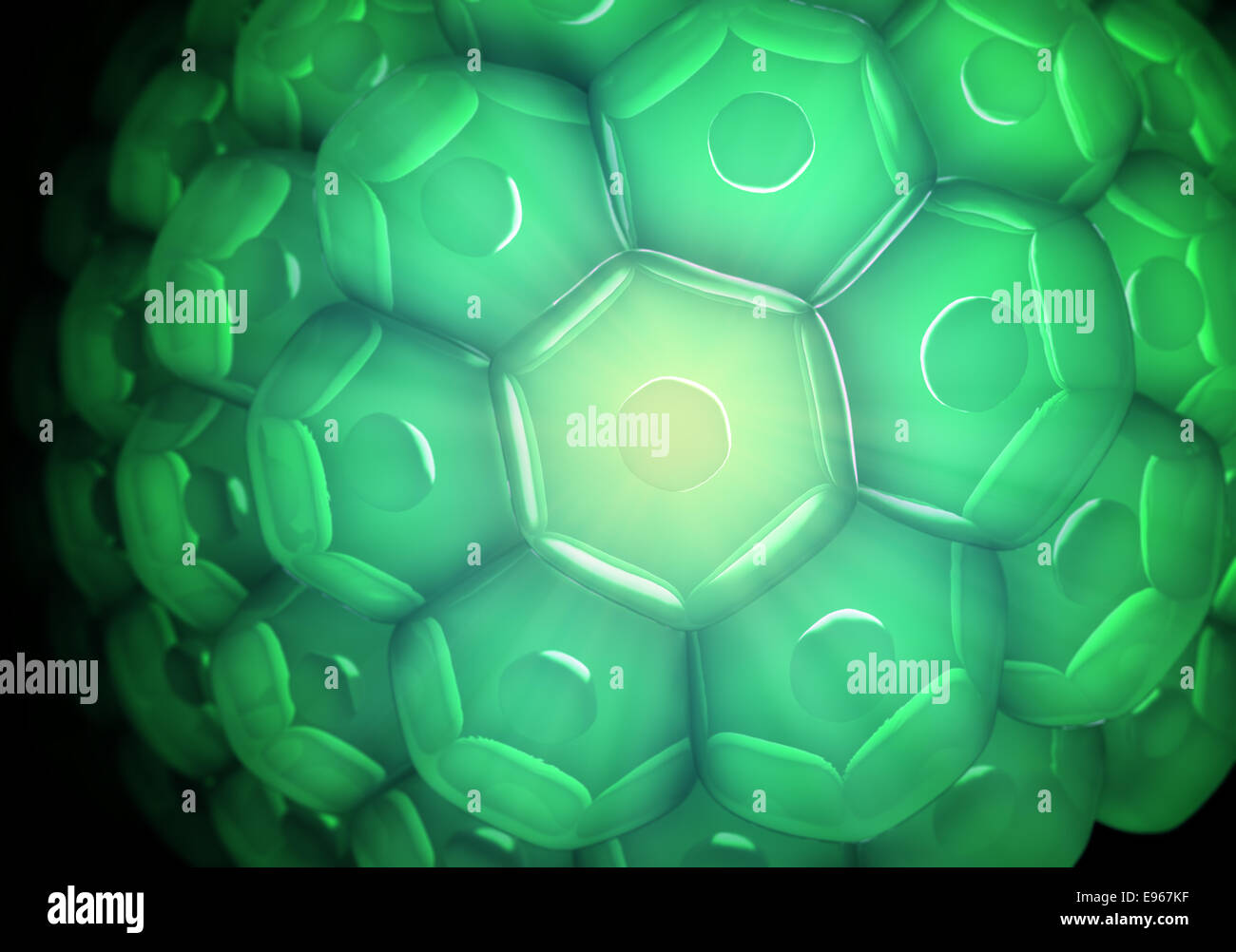 close up view of a cell wall biology background stock photo
