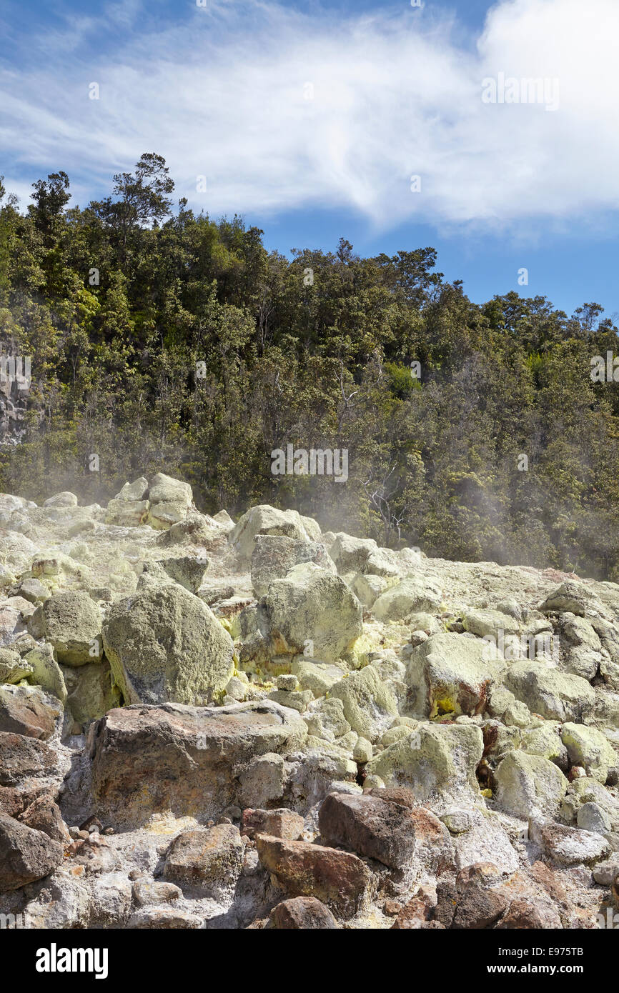 Rocks made yellow by sulphurous gases, Hawaii - Stock Image