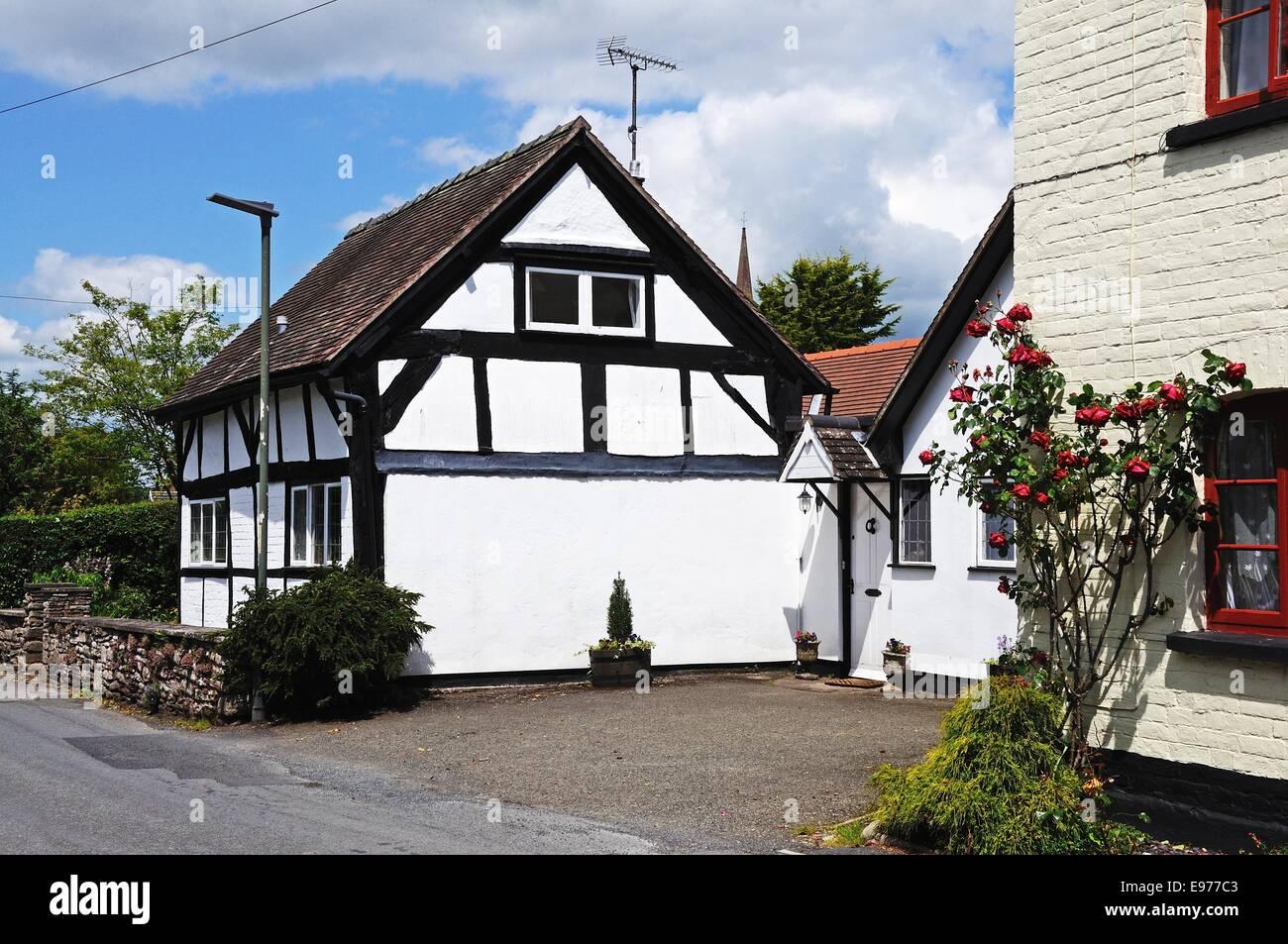 White timbered cottages along Mill Bank, Weobley, Herefordshire, England, UK, Western Europe. - Stock Image
