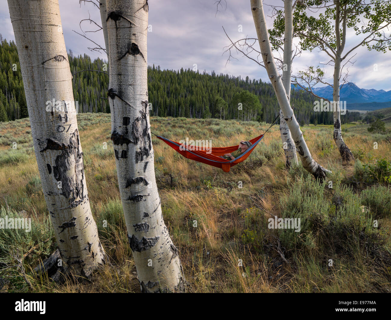 Nothing like a relaxing day in a hammock on a grassy ridge line overlooking the Sawtooth Wilderness. - Stock Image