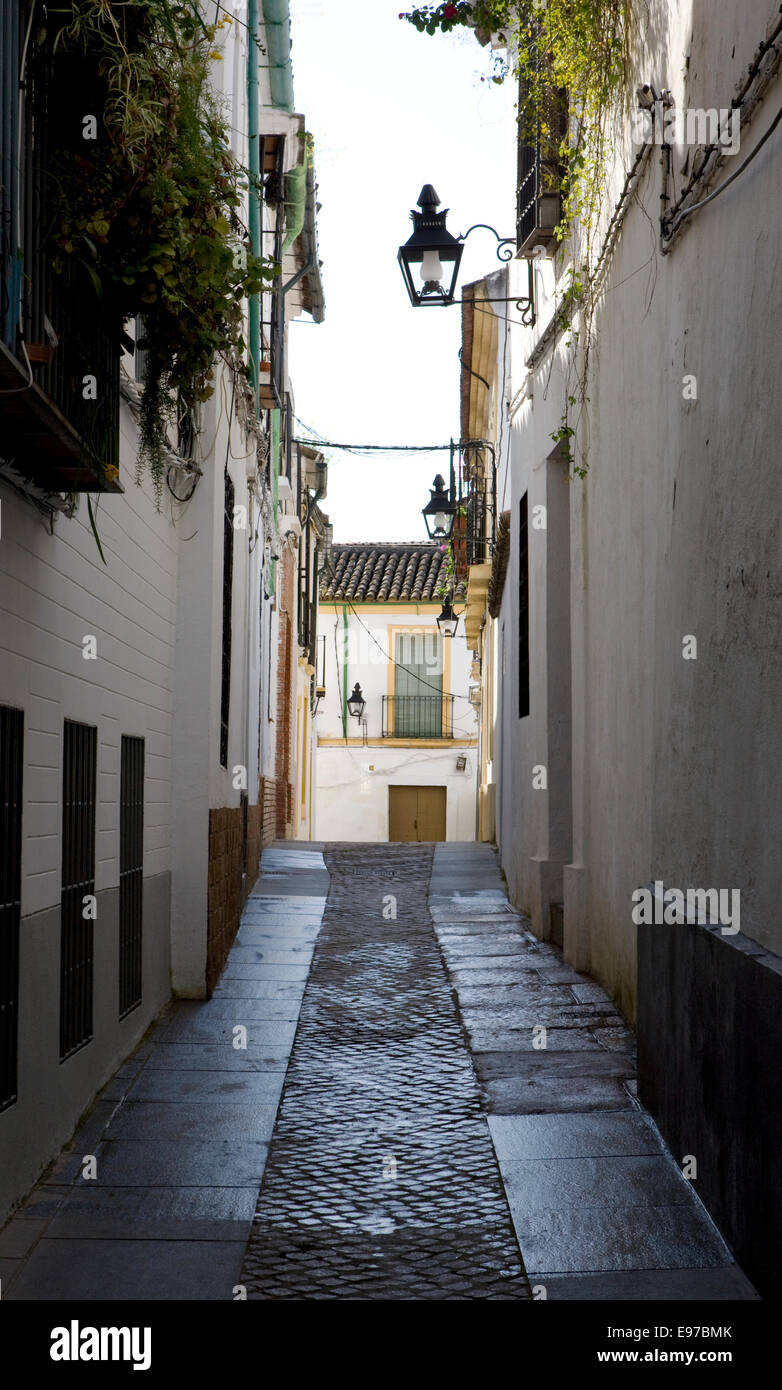 Street view from the old town in Cordoba, Andalucia - Stock Image