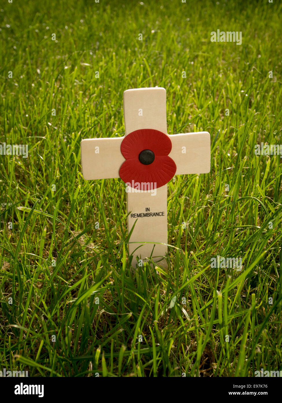Wooden Poppy Appeal In Remembrance cross in grass. - Stock Image