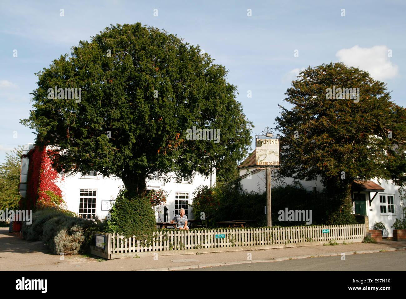 Dyke's End Inn Reach Cambridgeshire England UK - Stock Image