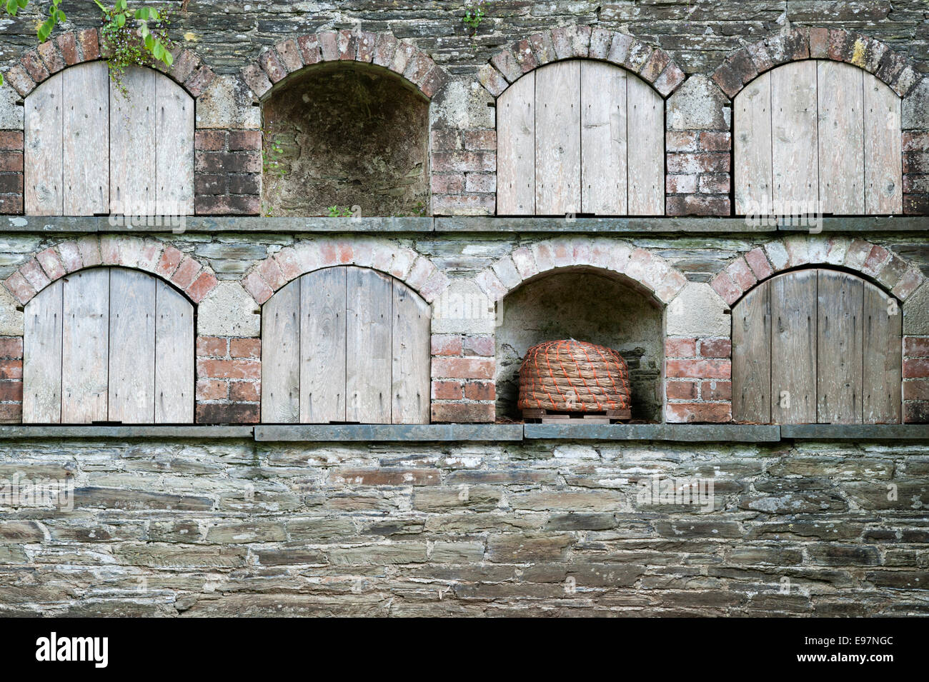 The Lost Gardens of Heligan, Cornwall, UK. A stone wall with built-in bee boles (alcoves), some containing straw - Stock Image