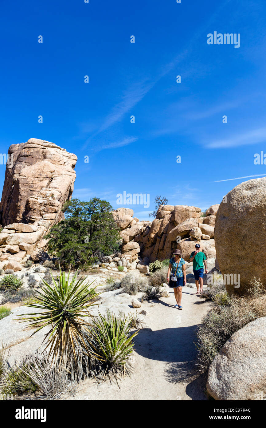 Walkers on trail in Hidden Valley, a former cattle rustler hide-out, Joshua Tree National Park, Southern California, - Stock Image