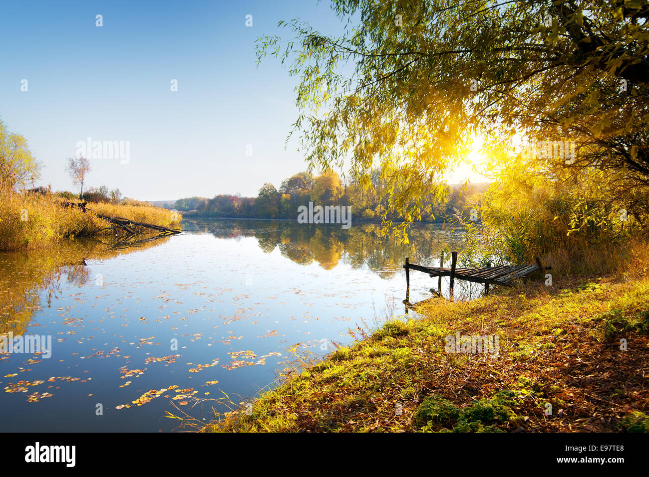 Calm river and autumn forest at sunrise - Stock Image