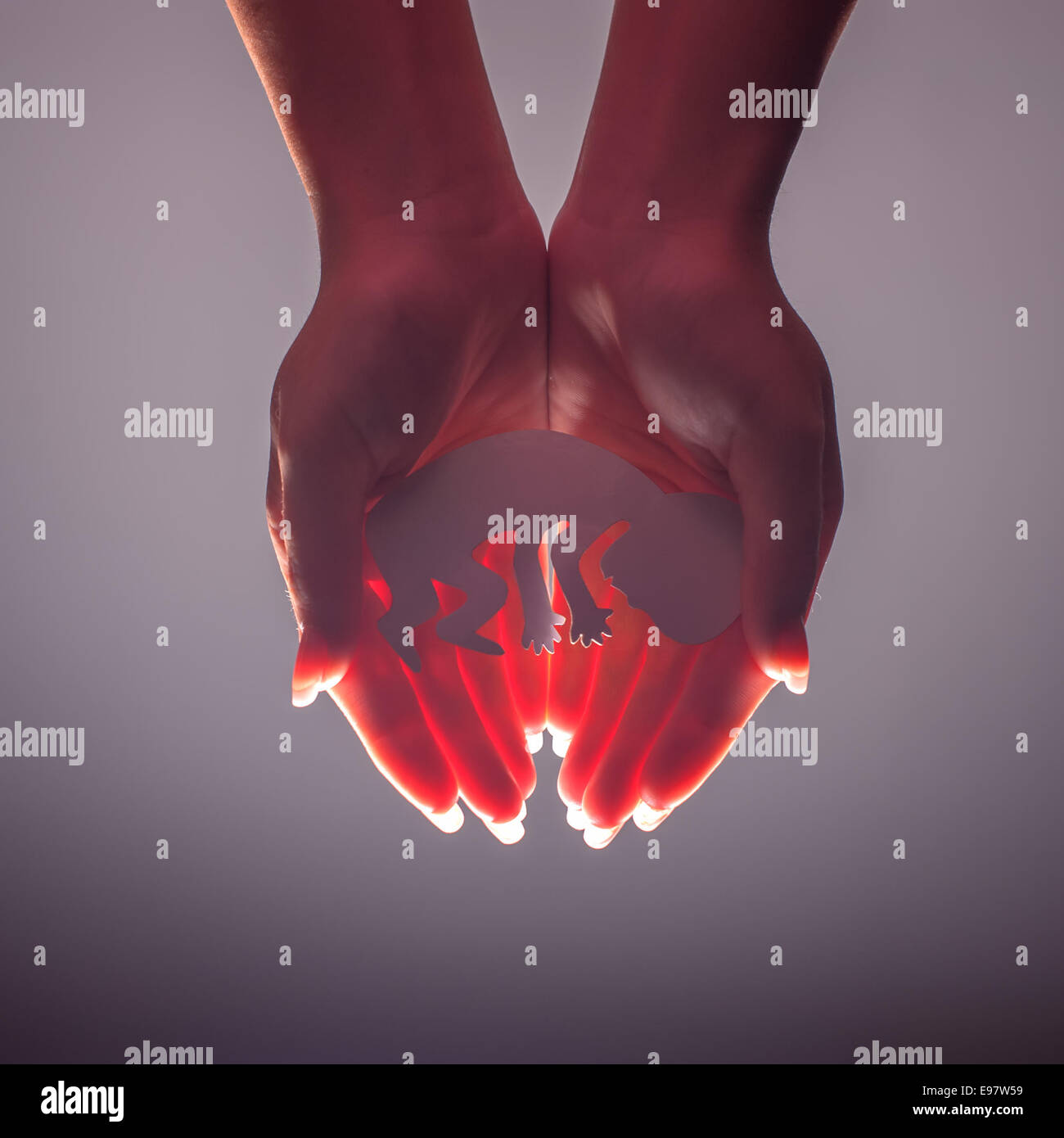 embryo silhouette in woman hand - Stock Image