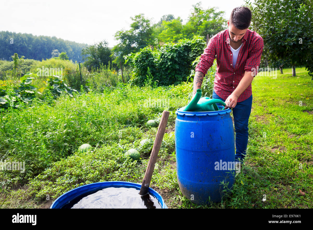 Young man filling watering can at barrel - Stock Image