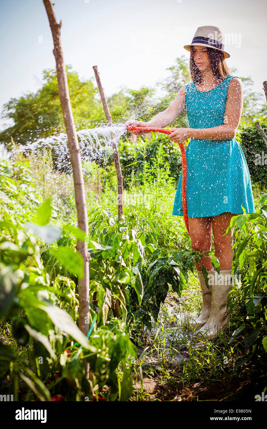 Young woman watering vegetable garden - Stock Image