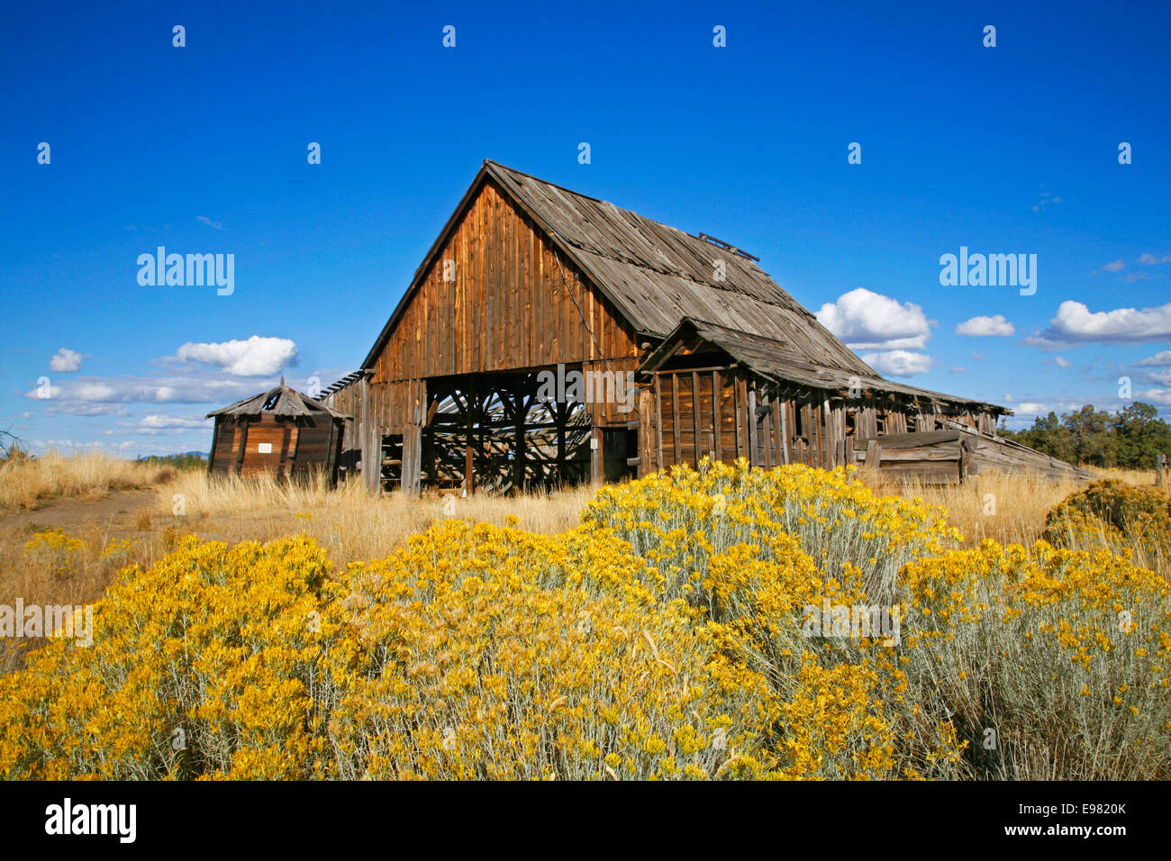 Old Cattle Barn Stock Photos Amp Old Cattle Barn Stock