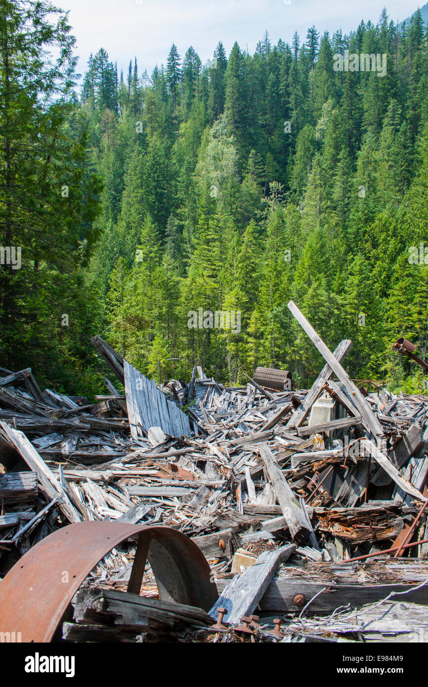 Alamo Siding, an abandoned mining town along the Galena trail and Carpenter Creek, Slocan Valley, West Kootenay, - Stock Image