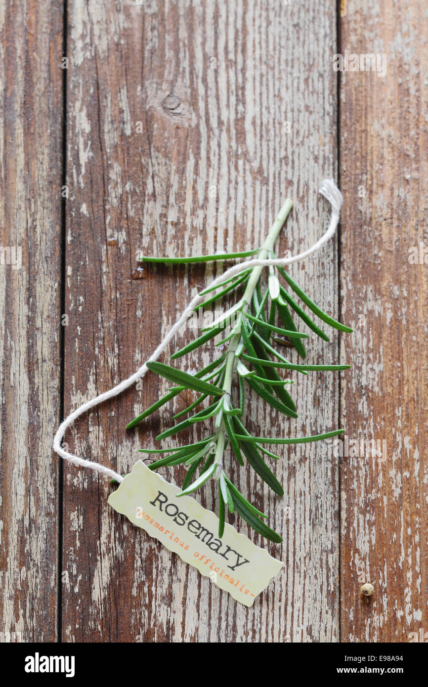 Sprig of fresh rosemary with a serrated edged decorative name tag tied with string on a grunge worn and weathered - Stock Image
