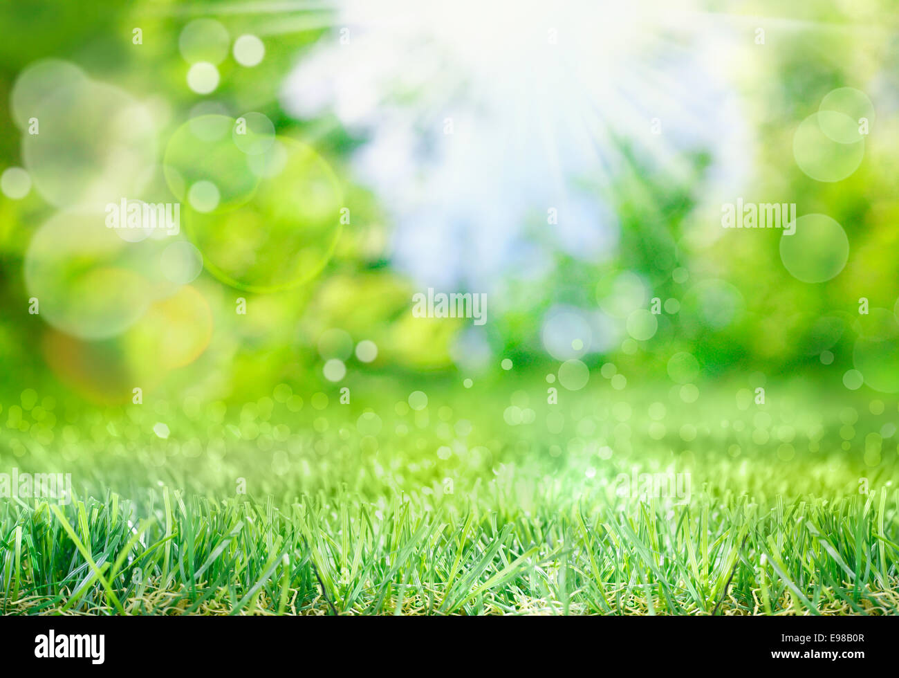 Soft defocused spring background with a sunburst and bokeh over lush green grass - Stock Image