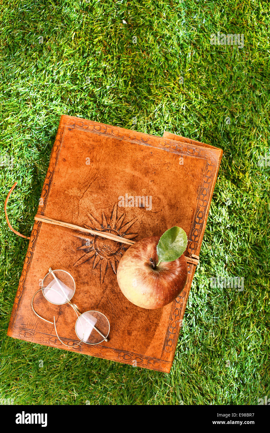 Beautiful old leather book with a tooled pattern on the cover, vintage glasses and a fresh apple on lush green grass - Stock Image