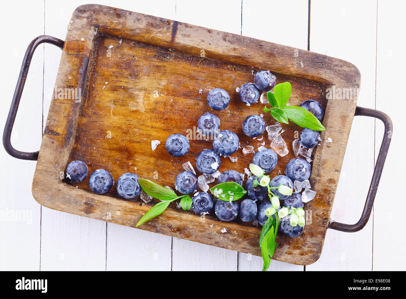 Ripe blueberries or bilberries in an old grungy wood tray with a small flowery branch over a white wooden table - Stock Image