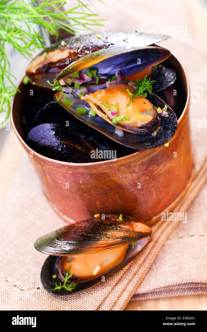 Delicious freshly boiled marine mussels in a copper saucepan with their shells open garnished with dill for a gourmet Stock Photo