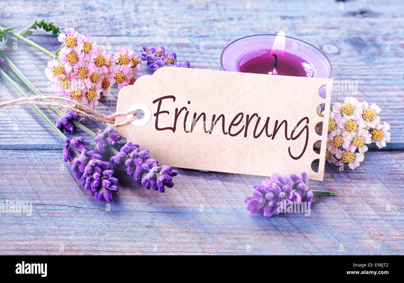 Beautiful delicate blue and lilac colored background depicting - Erinnerung - Memories - with fresh scented lavender - Stock Image