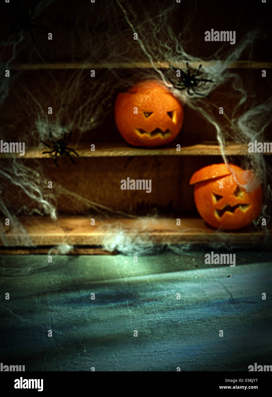 Two Halloween Jack o Lanterns Carved from Oranges and Spiderwebs with Spiders on Shelves Blurred in Background with - Stock Image