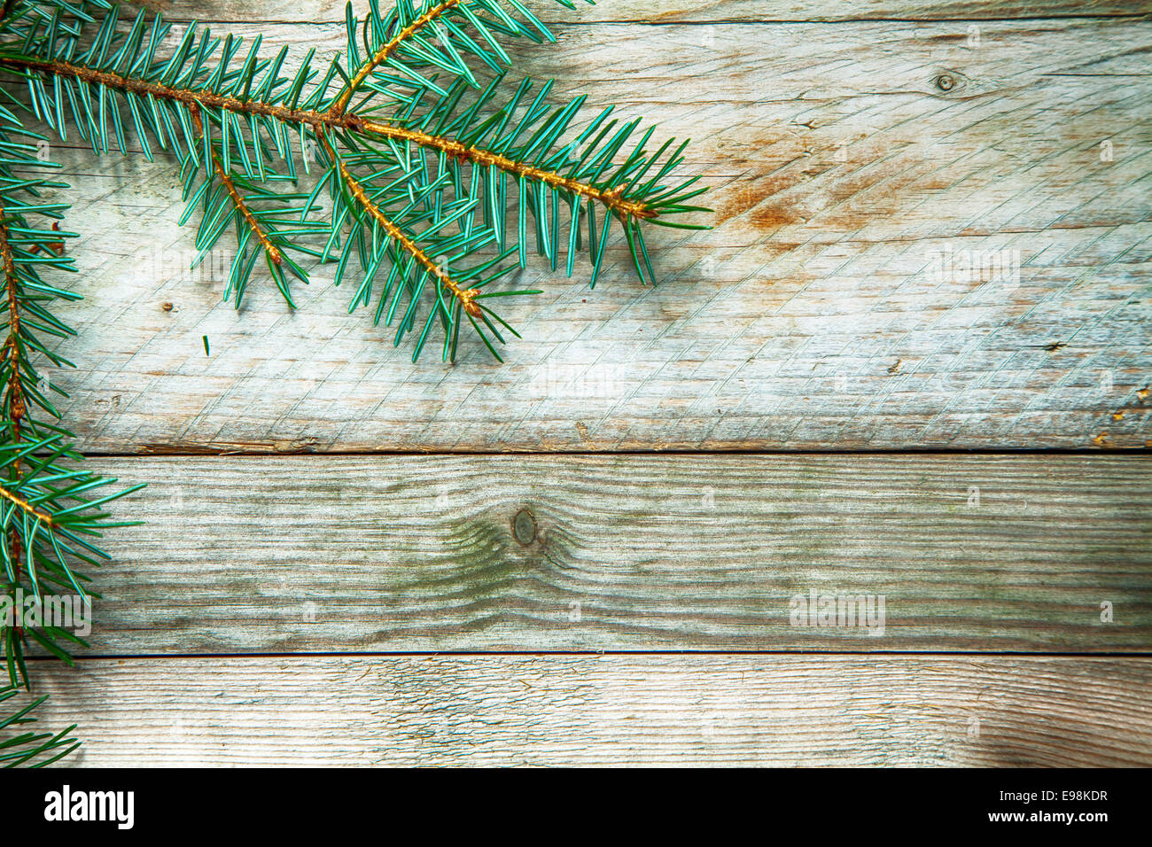 Seasonal Background With A Pine Branch Arranged As A Corner Border On Stock Photo Alamy