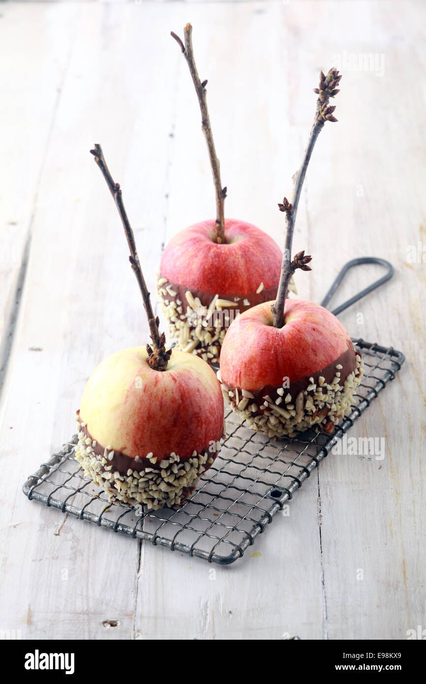 Three fresh red apples with twigs and chocolate coating decorated with sprinkles standing cooling on a wire rack - Stock Image