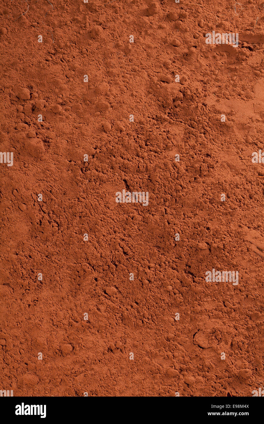 cacao powder, or chocolate powder for choc concepts Stock Photo