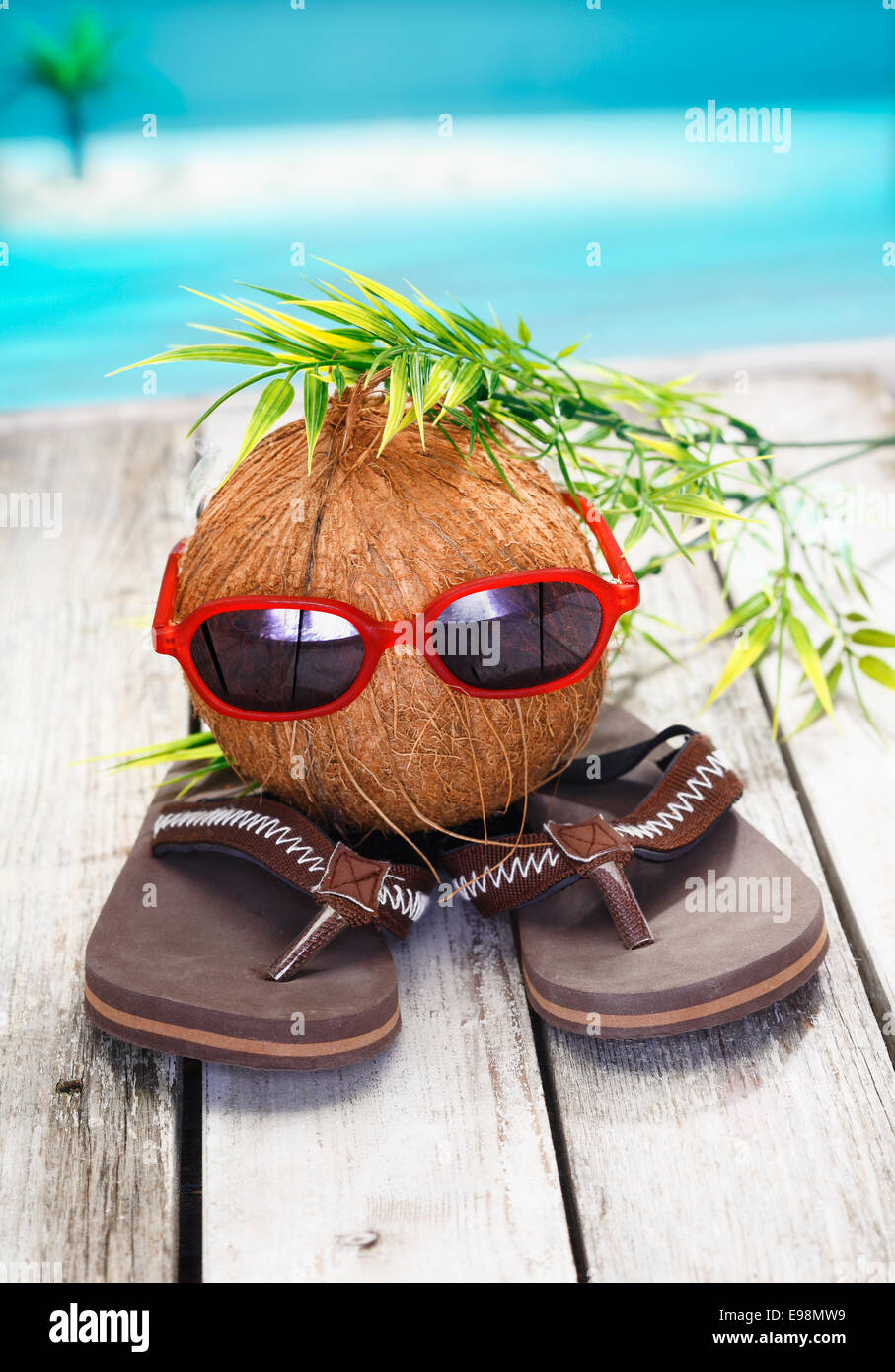 Humorous spoof of a cool coconut adventurer with a leafy hairstyle and trendy red sunglasses - Stock Image